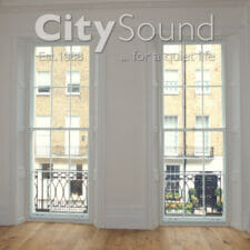 25. Secondary sash windows fitted over period windows (Islington, London)